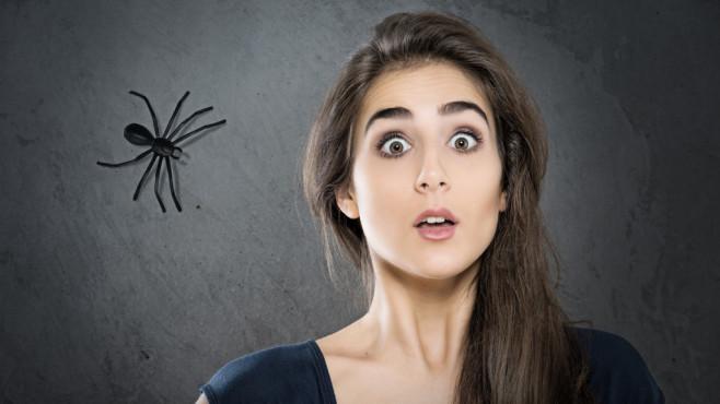 Arachnophobia mit Hypnose
