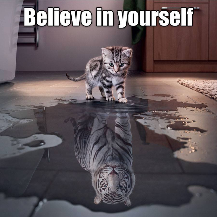 Selbstwert und Selbstsicherheit